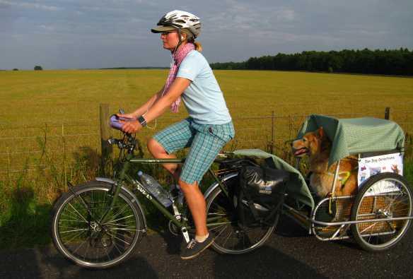 portare cane in bici