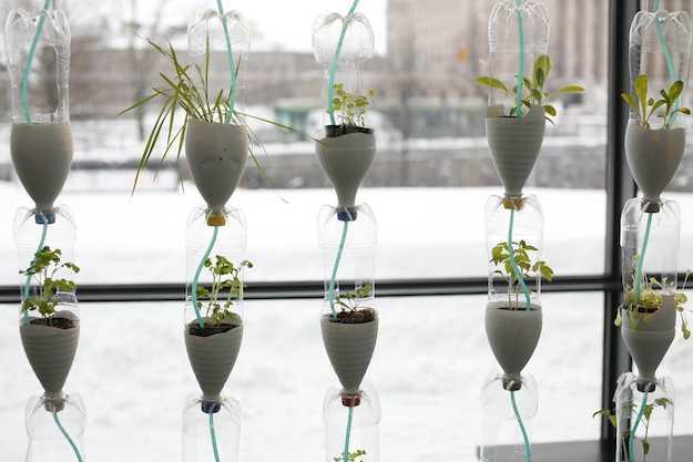Costruire un giardino verticale idee green - Come realizzare un giardino verticale ...