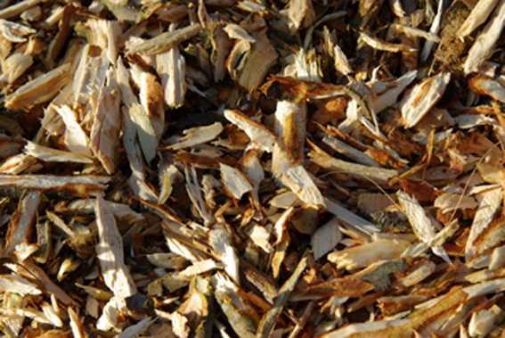 cippato-legno-ramaglie