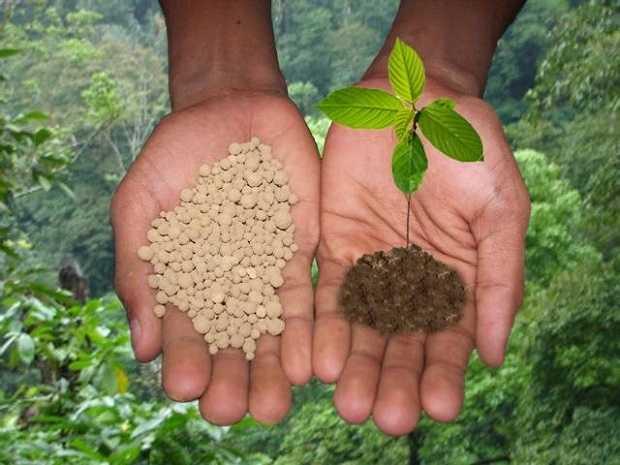 fertilizzante naturale