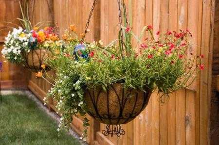 giardino verticale da balcone o in casa idee green