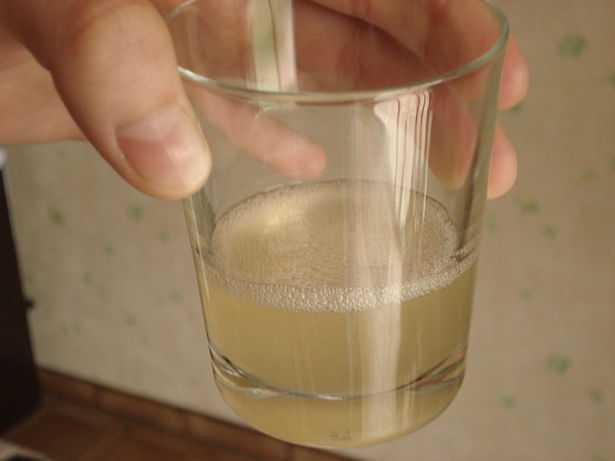 succo di aloe vera da bere