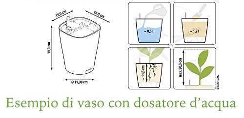 vaso con dosatore d acqua