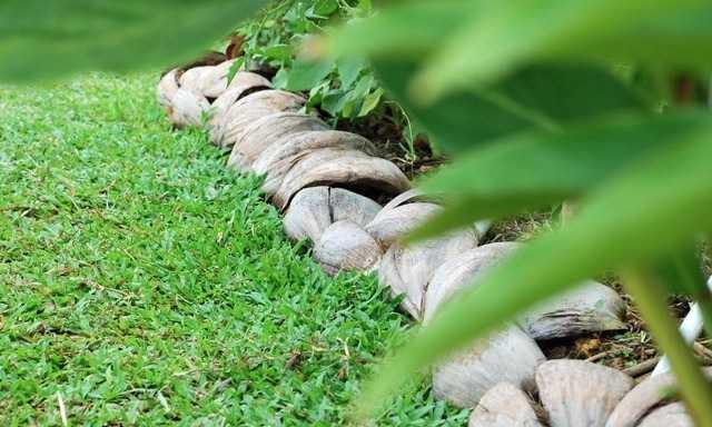 Bordure per aiuole tutte le soluzioni idee green for Aiuole profumate