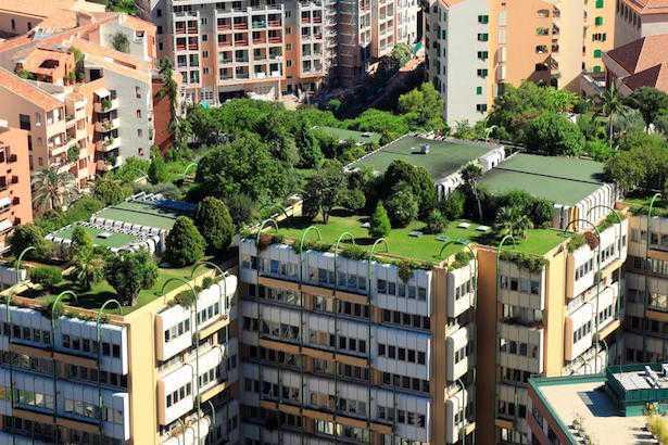 tetto verde stratigrafia