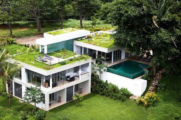 tetto verde vantaggi costo