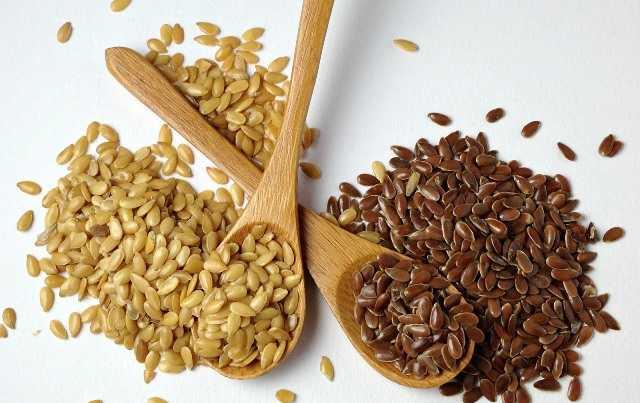 semi di lino impiego