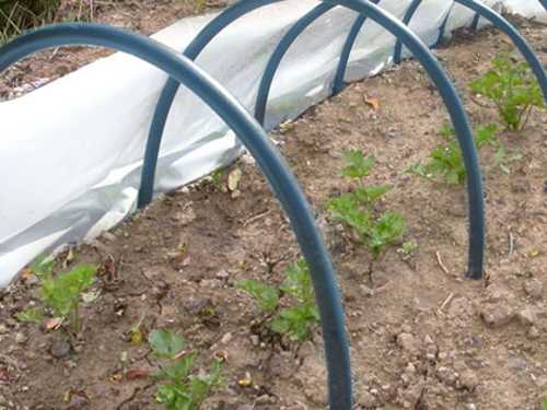 Come costruire una serra da giardino idee green for Serre tunnel usate