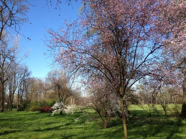 Parco Lambro - Il mio luogo del cuore