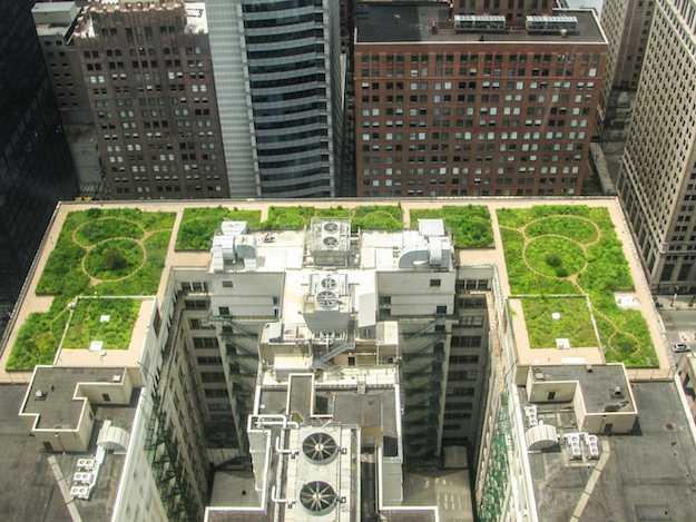 tetto verde vantaggi