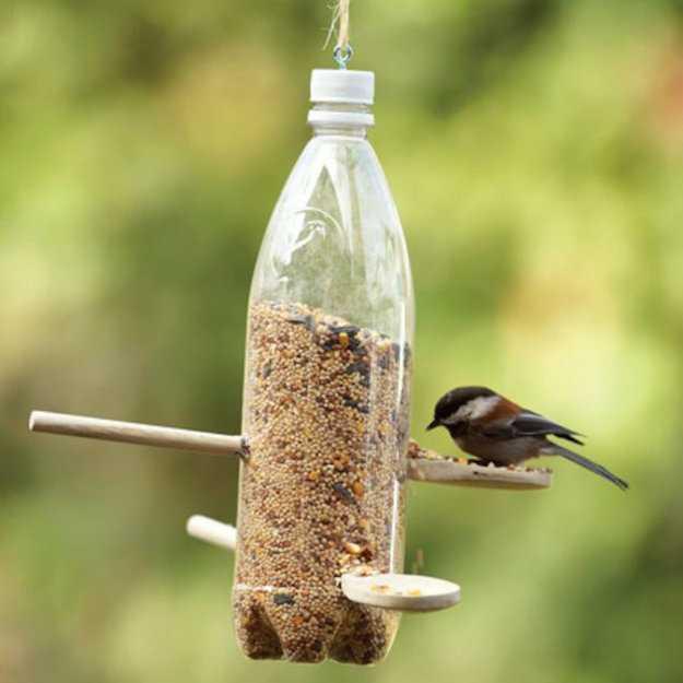 mangiatoia uccelli da giardino