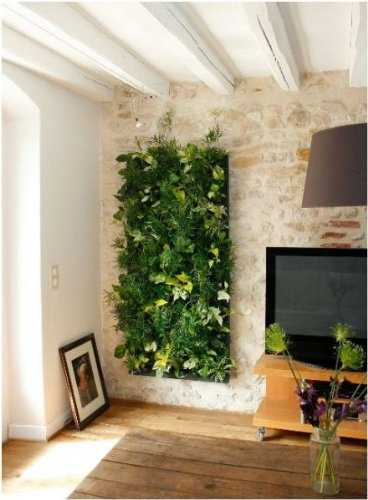 Come realizzare una parete vegetale idee green - Plantas de interior grandes ...