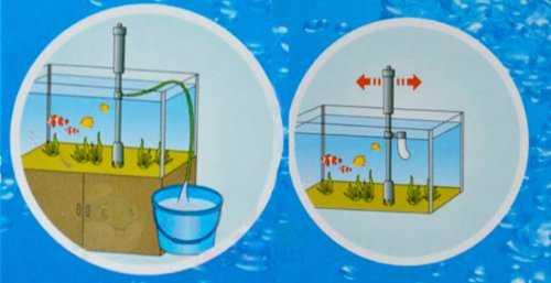cambiare acqua acquario