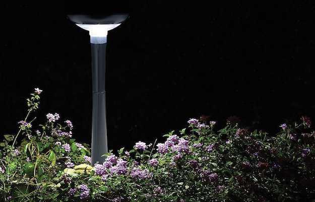 come illuminare giardino