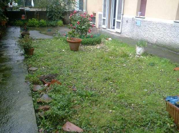 come ripulire il terreno dalle erbacce