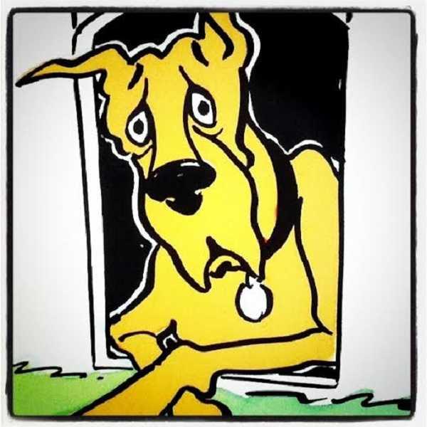 emperatura corporea dei cani