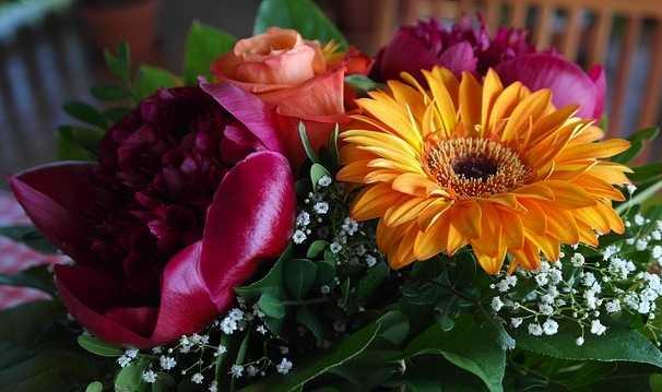 Come conservare i fiori recisi