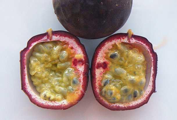 bacche passiflora
