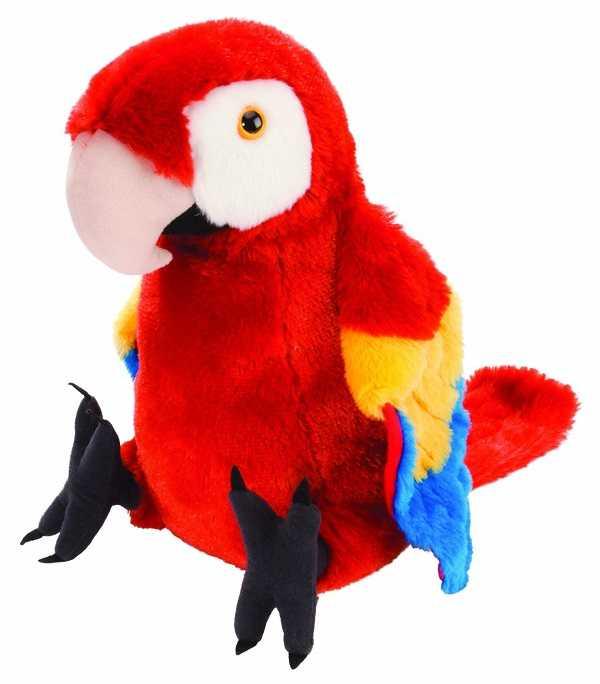 pappagalli parlanti2