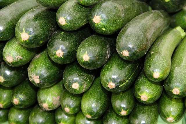 afidi zucchini