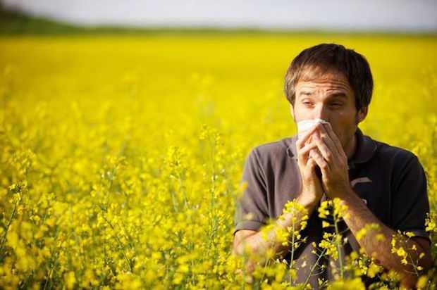 combattere le allergie