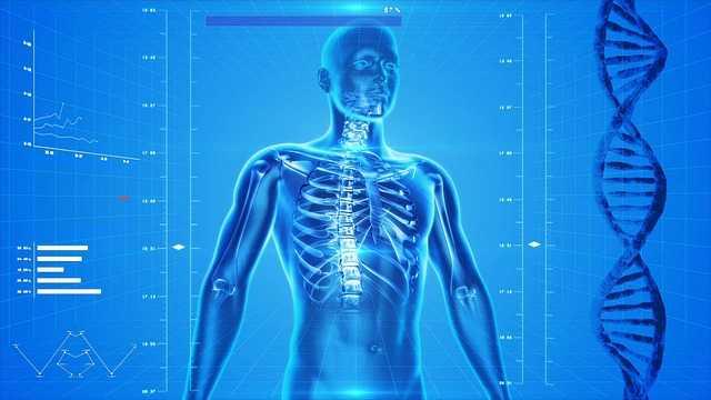 curare mal di schiena rimedi naturali