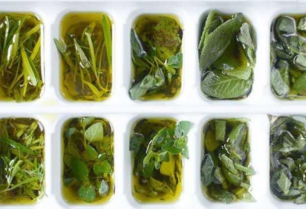 conservare erbe aromatiche fresche