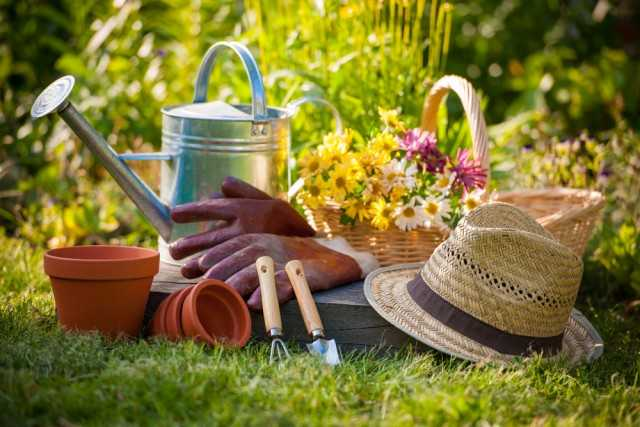 lavori nell'orto a maggio