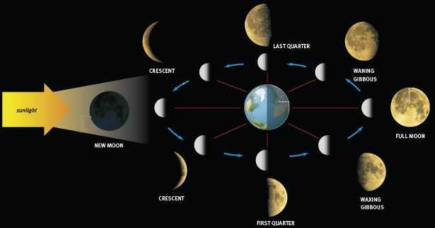 Movimenti della luna