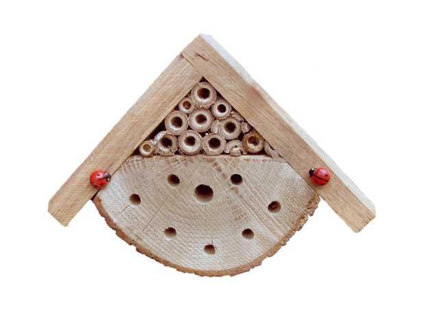 Rifugio per api solitarie