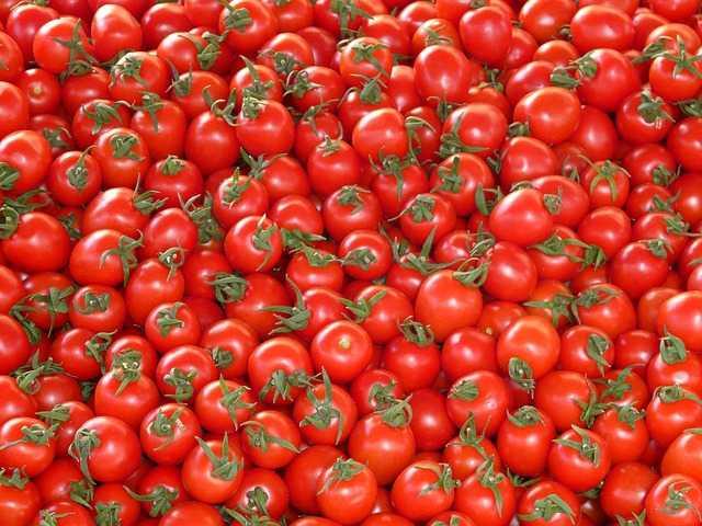 passata di pomodori fatta in casa
