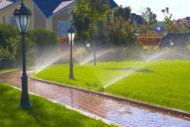 irrigazione interrata fai da te