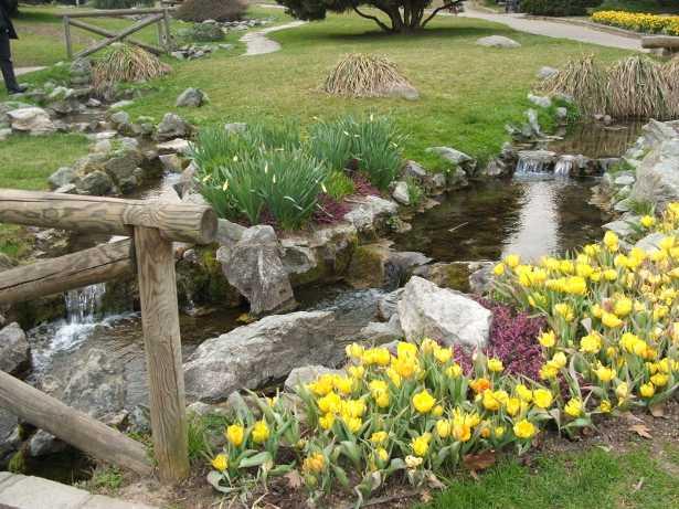 giardino roccioso quali piante scegliere idee green