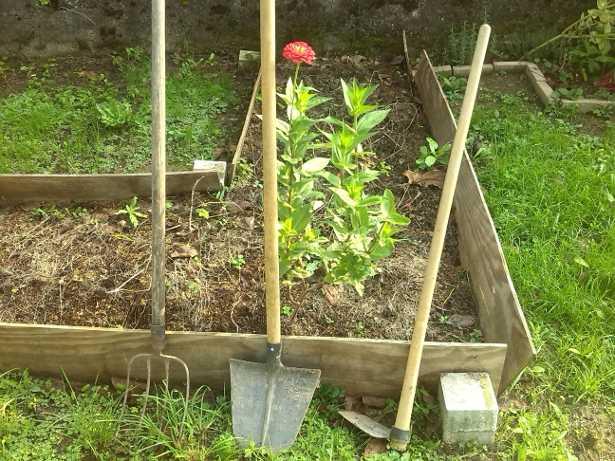 Attrezzi da giardino gli indispensabili idee green - Attrezzi da giardino professionali ...