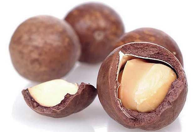 olio di macadamia capelli