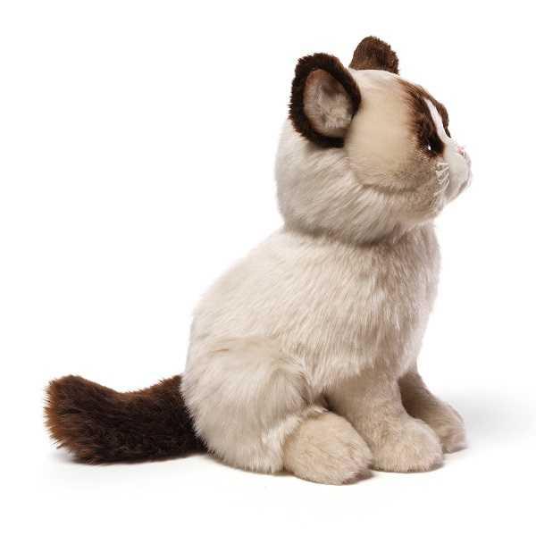 gatti famosi1
