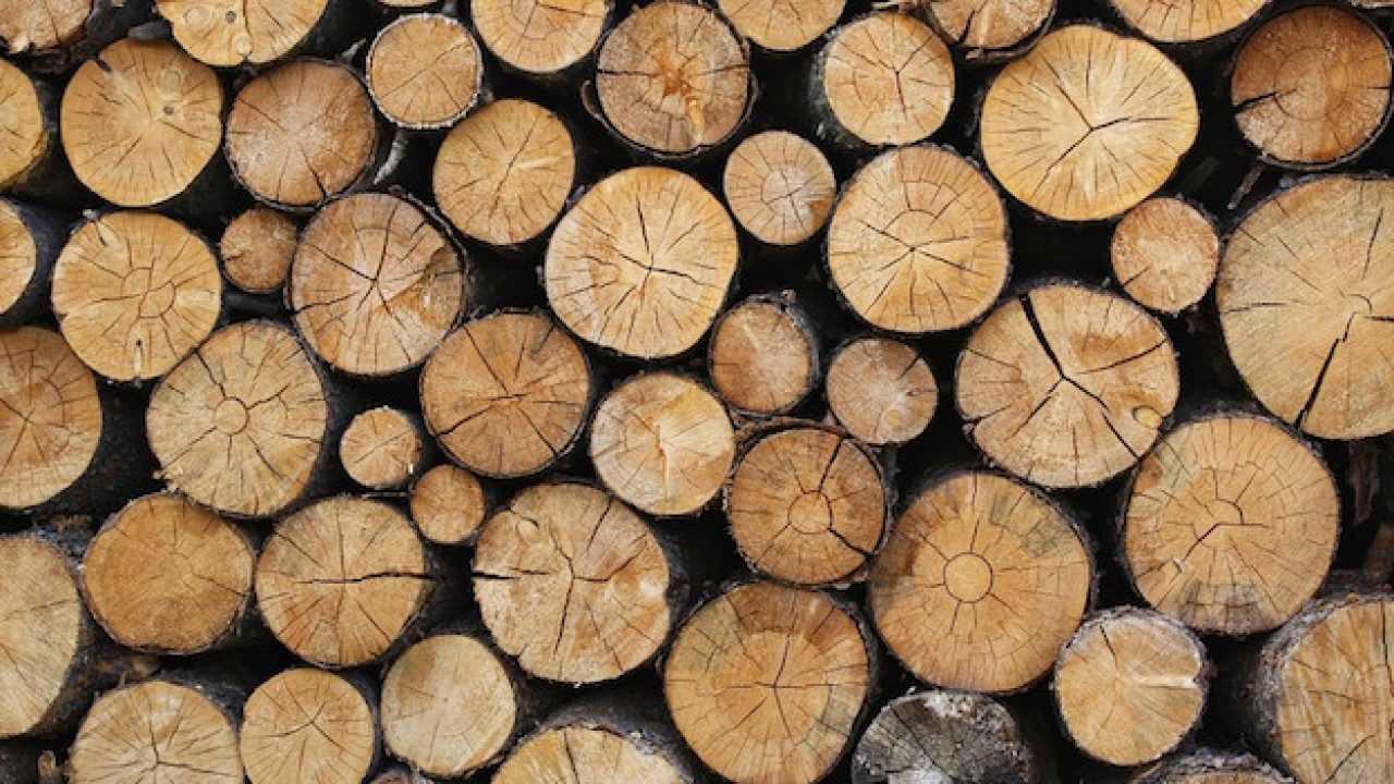 Proprietà Cenere Di Legna migliore legna da ardere - idee green