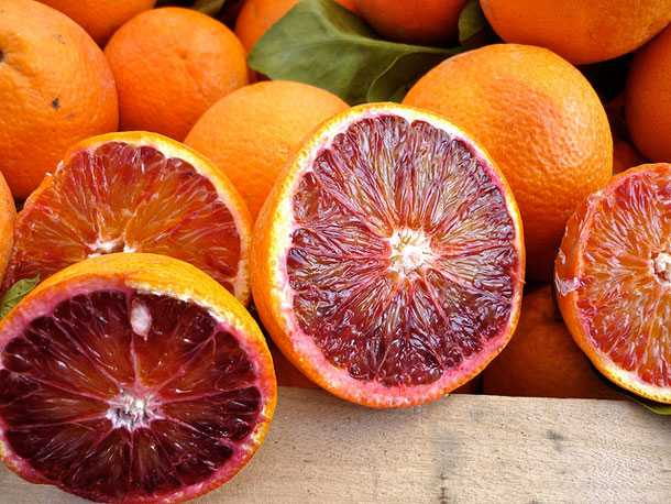 coltivare arance rosse