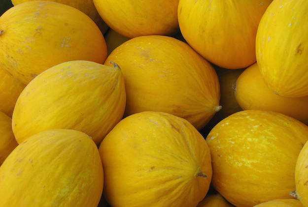 conservare melone per inverno