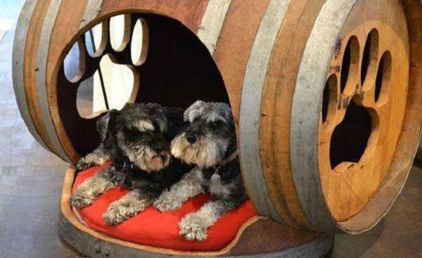 cucce per cani da esterno in legno
