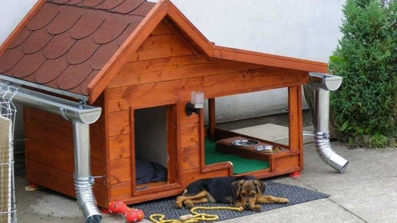Animali Di Plastica Da Giardino.Cucce Per Cani Da Esterno Idee Green