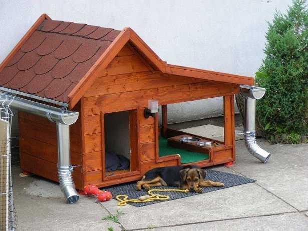 cucce per cani da esterno idee green