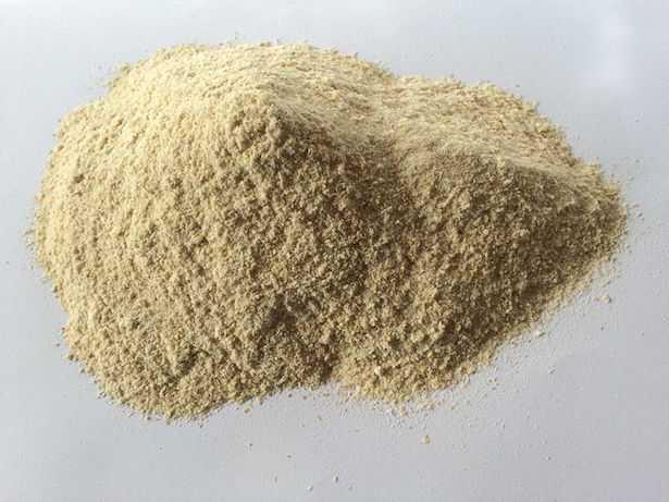 farina di grano di timilia