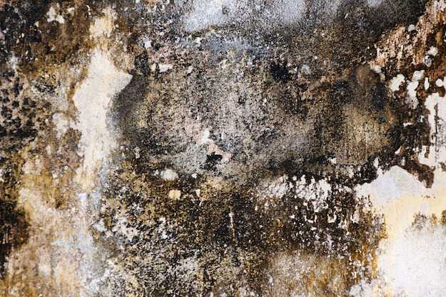 intonaco deumidificante per pareti