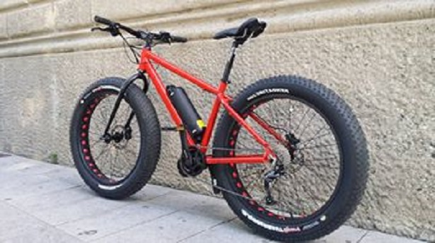 bicicletta a pedalata assistita fat bike