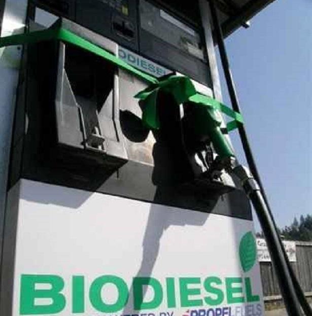 green diesel e biodiesel
