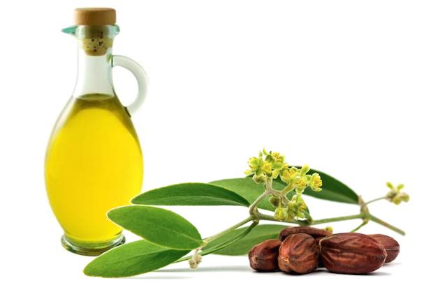 olio di jojoba proprietà
