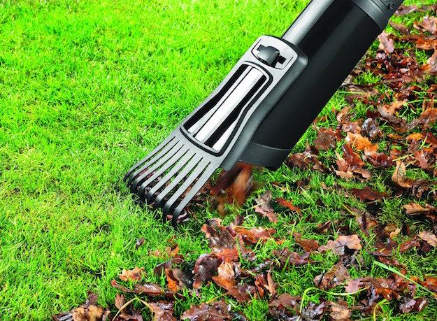 Come togliere le foglie dal giardino idee green - Eliminare topi dal giardino ...