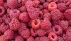 Raspberry Ketone funziona
