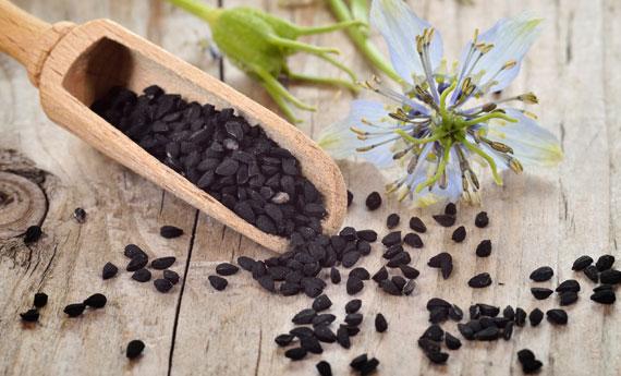 Come-raccogliere-e-conservare-i-semi